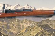 Marktübersicht 7,5x55 Suisse - neu im RWM-Kiosk